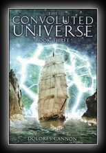 The Convoluted Universe - Book 3